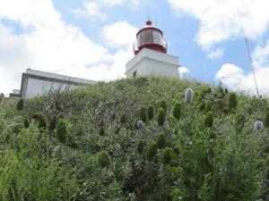 Der Leuchtturm bei Ponta do Pargo