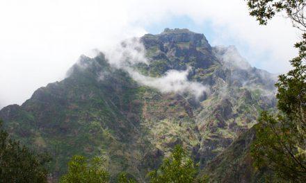 Fajã da Nogueira – entlang der Levada do Pico Ruivo