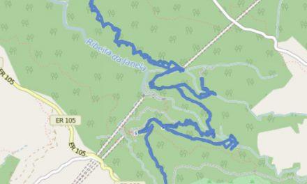 GPS Tracks – HIKING – Risco Wasserfall & Levada das 25 Fontes