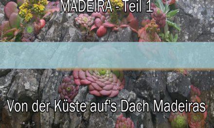 Video – Von der sonnigen Küste auf's Dach Madeiras