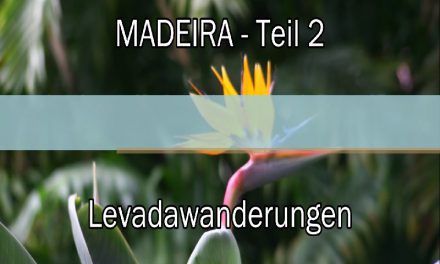 Video – Levadawanderungen