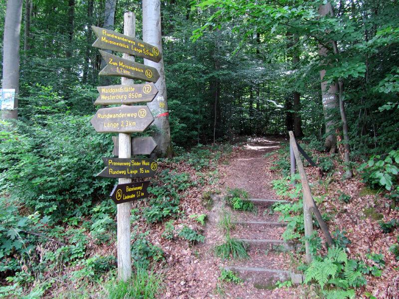 P7 – Premiumwanderweg Söder Wald