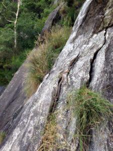 Bekanntschaft am Fels