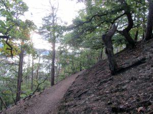 Toller Trail bei Waldeck