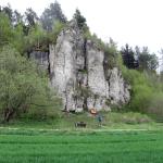Steinfelder Wand