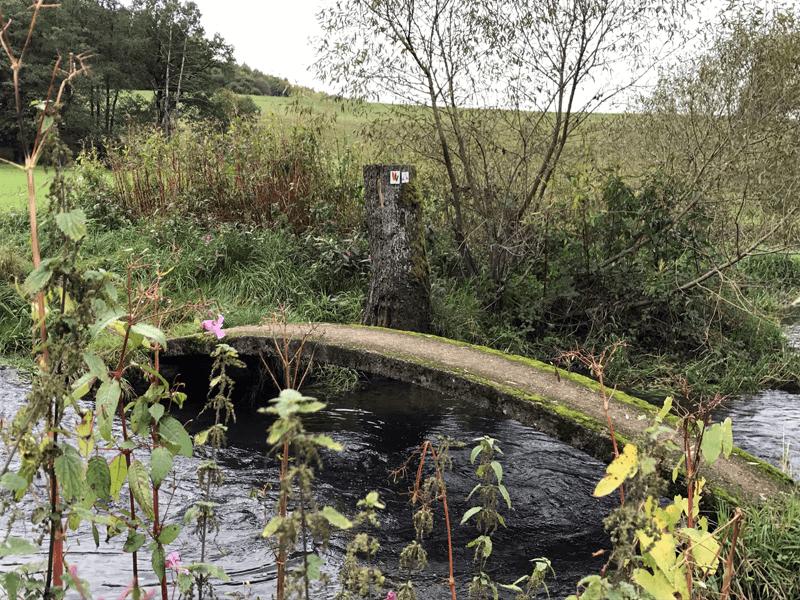 Extratour Vogelsberg – Naturtour