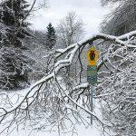 Extratour – Basaltweg