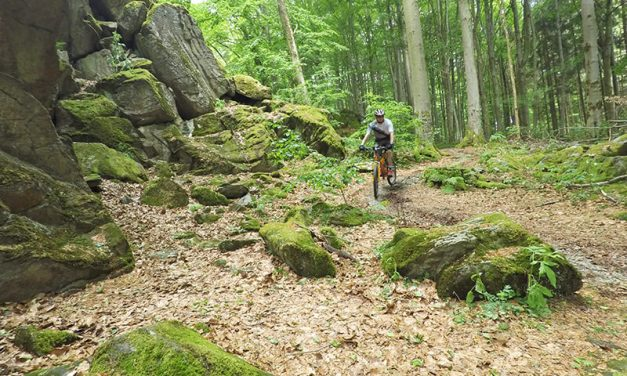 Mountainbike-Tour zur Milseburg